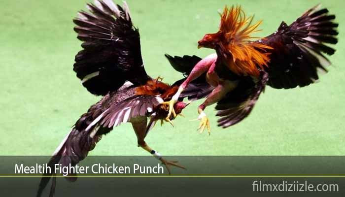 Mealtih Fighter Chicken Punch